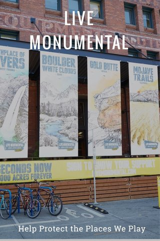 LIVE MONUMENTAL Help Protect the Places We Play
