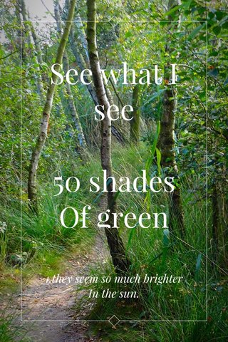 See what I see 50 shades Of green 1.they seem so much brighter In the sun.