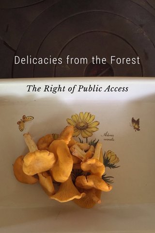 Delicacies from the Forest The Right of Public Access