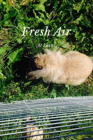 Fresh Air At Last...