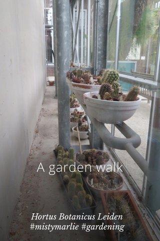 A garden walk Hortus Botanicus Leiden #mistymarlie #gardening