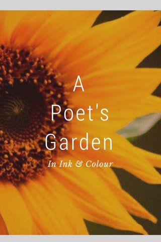 A Poet's Garden In Ink & Colour