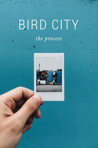 BIRD CITY the process
