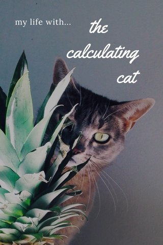 the calculating cat my life with...