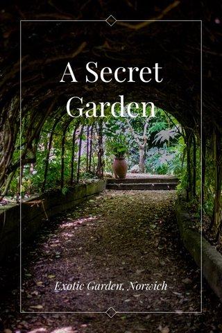 A Secret Garden Exotic Garden, Norwich