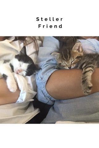Steller Friend Diff