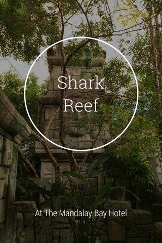 Shark Reef At The Mandalay Bay Hotel
