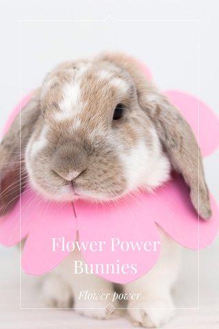 Flower Power Bunnies Flower power