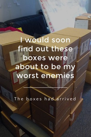 I would soon find out these boxes were about to be my worst enemies The boxes had arrived