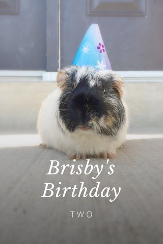 Brisby's Birthday TWO