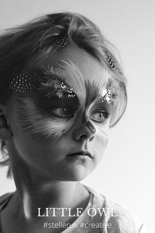 LITTLE OWL #stelleruk #creative