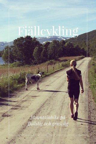 Fjällcykling Mountainbike på fjällstig och grusväg