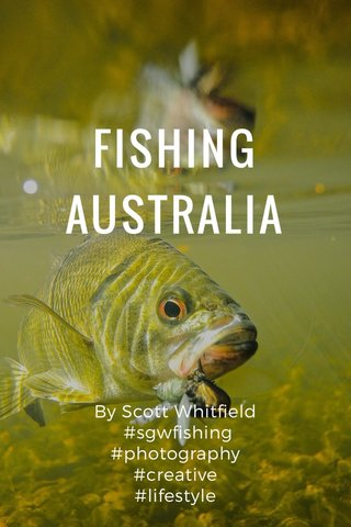 FISHING AUSTRALIA By Scott Whitfield #sgwfishing #photography #creative #lifestyle #adventure #outdoors #underwaterphotography