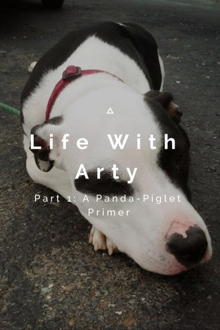 Life With Arty Part 1: A Panda-Piglet Primer