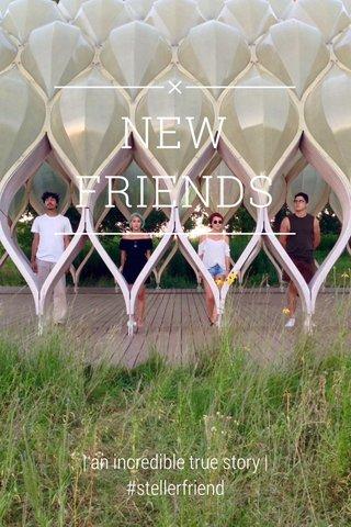 NEW FRIENDS | an incredible true story | #stellerfriend