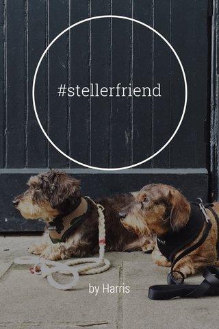 #stellerfriend by Harris