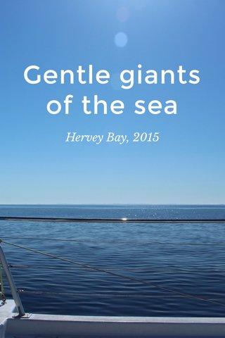 Gentle giants of the sea Hervey Bay, 2015