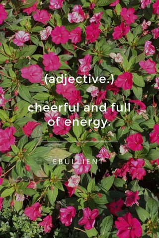 (adjective.) cheerful and full of energy. EBULLIENT