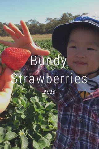 Bundy Strawberries 2015