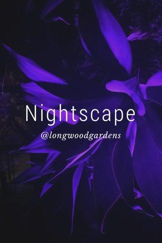 Nightscape @longwoodgardens