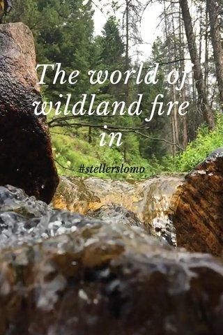 The world of wildland fire in #stellerslomo