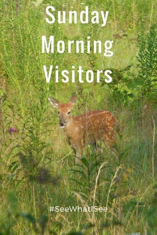 Sunday Morning Visitors #SeeWhatISee