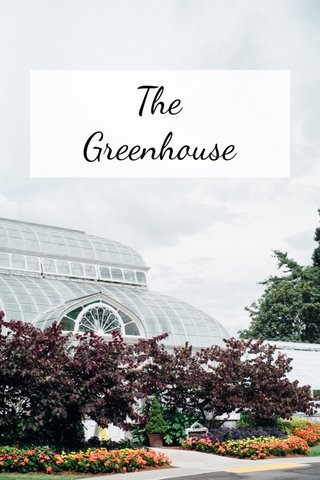 The Greenhouse Volunteer Park Conservatory