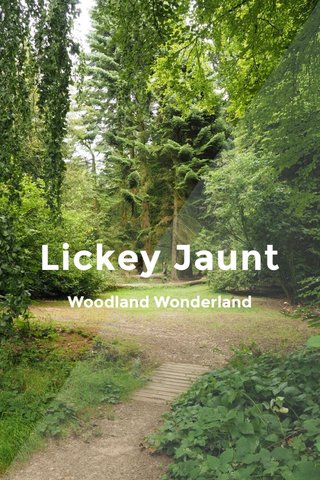 Lickey Jaunt Woodland Wonderland