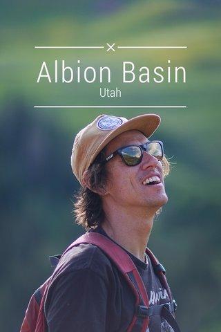 Albion Basin Utah
