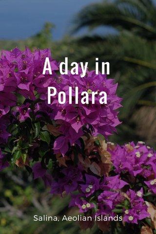A day in Pollara Salina, Aeolian Islands
