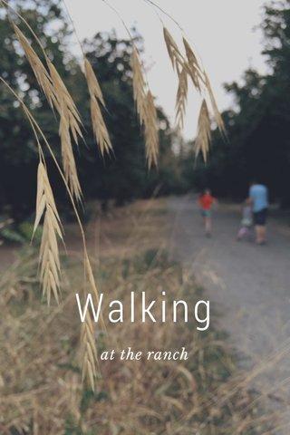 Walking at the ranch
