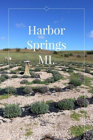 Harbor Springs MI.