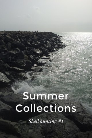 Summer Collections Shell hunting #1