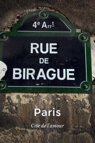 Paris Cite de l'amour