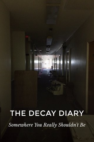THE DECAY DIARY Somewhere You Really Shouldn't Be