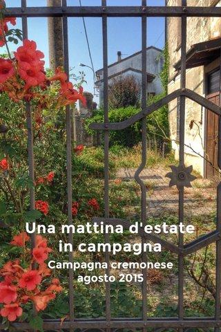 Una mattina d'estate in campagna Campagna cremonese agosto 2015