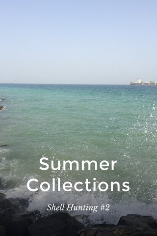 Summer Collections Shell Hunting #2