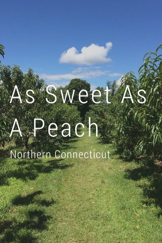 As Sweet As A Peach Northern Connecticut