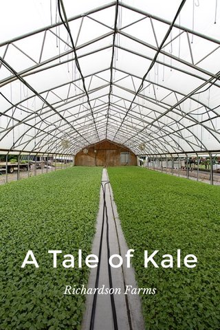 A Tale of Kale Richardson Farms