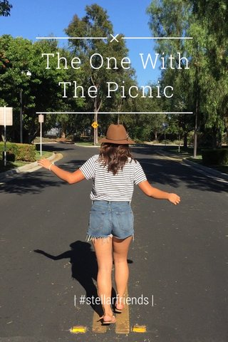The One With The Picnic | #stellarfriends |