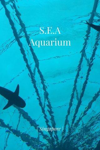 S.E.A Aquarium | Singapore |