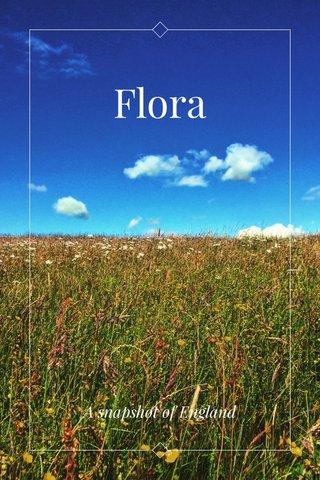 Flora A snapshot of England