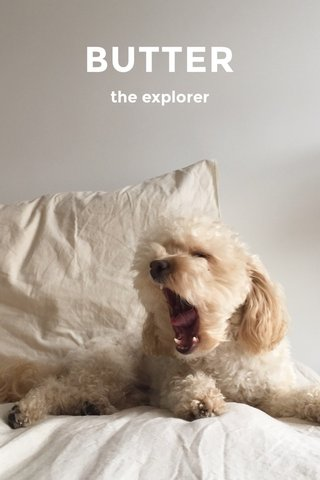 BUTTER the explorer