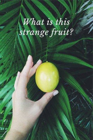What is this strange fruit?