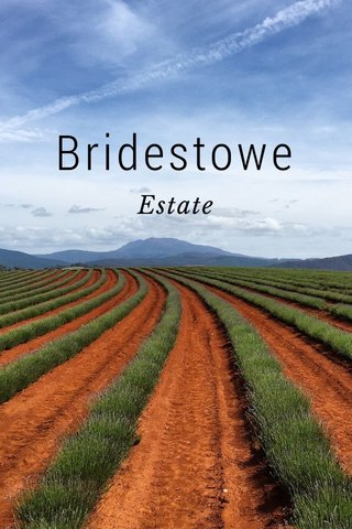 Bridestowe Estate