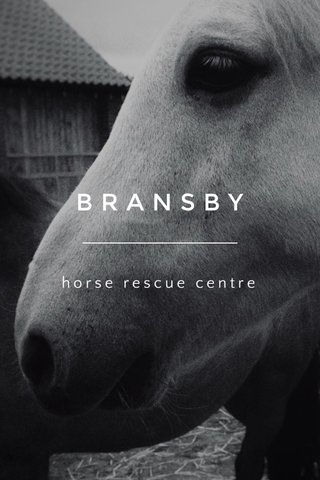 BRANSBY horse rescue centre