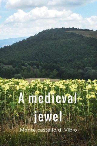 A medieval jewel Monte castello di Vibio