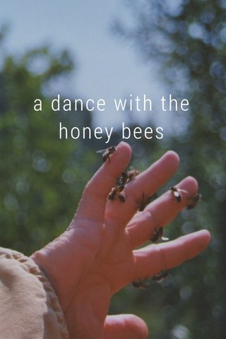 a dance with the honey bees