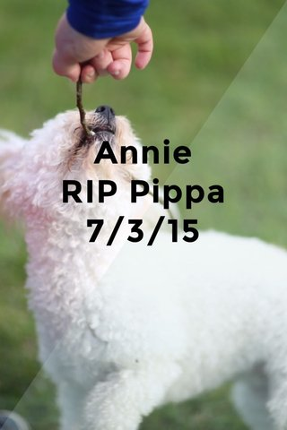 Annie RIP Pippa 7/3/15