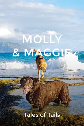 MOLLY & MAGGIE Tales of Tails